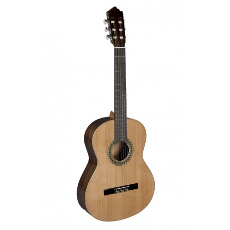 Paco Castillo Guitarra 201 Mate