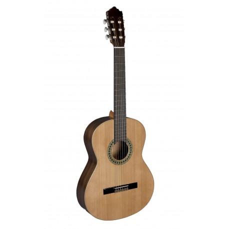 Paco Castillo Guitarra 201