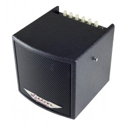 Ashdown Cube Vinilo Combo 40W