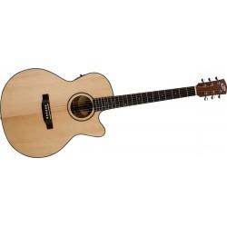 Bedell Discovery Orchestra Guitarra Electro-Acustica Con Funda