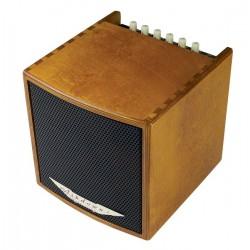 AMPLIFICADOR GUITARRA ACUSTICA COMBO 40 W. CUBE MADERA ASHDOWN