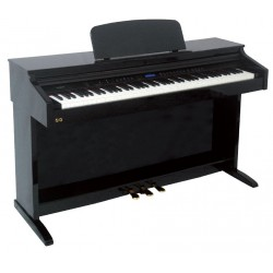 Ringway Piano TG8875 Lacado Negro
