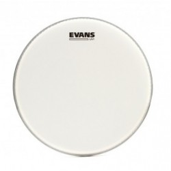 Evans Parche Caja 15'' UV1 Coated